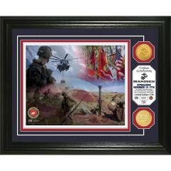 USMC Framed Wall Display Photo Mint with Bronze Collectors Coin